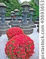 風景 自然 燈籠 40693653
