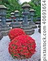 風景 自然 燈籠 40693654