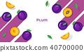 Fresh plum fruit background in paper art style 40700000
