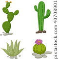 Collection of cactus illustration 40708901