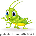 Cartoon green cricket isolated on white background 40710435