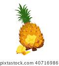 新鲜水果快餐杉木的例证 40716986