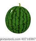 新鲜水果和西瓜的例证 40716987
