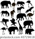 Silhouette elephant tiger bear giraffe flamingo 40729618