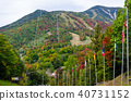 New York State Lake Placid 40731152