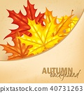 autumn, back, background 40731263