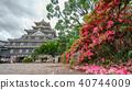 Okayama castle against dark clouds with flowers, Japan 40744009