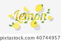 Word lemon design in paper art style 40744957