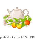 蘋果 茶 飲料 40746199