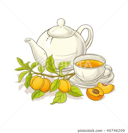 apricot tea illustration 40746209