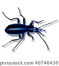 blue earth beetle, insect with shadow 40746430