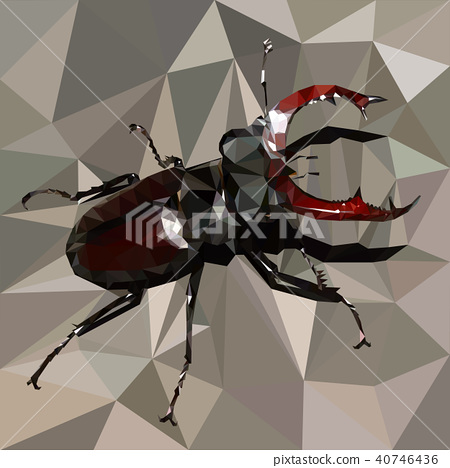 stag beetle, brown bug on a grey background 40746436