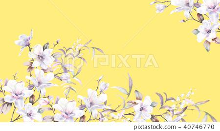 水彩玫瑰牡丹花卉 40746770