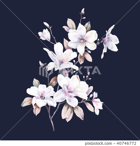 水彩玫瑰牡丹花卉 40746772