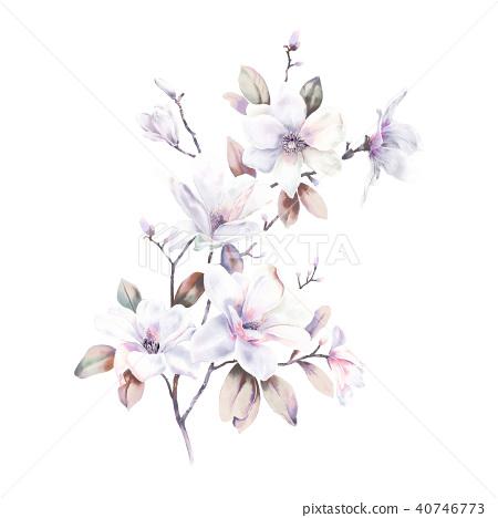 水彩玫瑰牡丹花卉 40746773