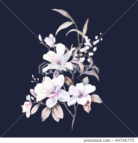 水彩玫瑰牡丹花卉 40746775
