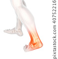 Ankle painful - skeleton x-ray. 40752216