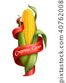 corn ribbon vector 40762008