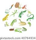 Lizard type animals icons set, cartoon style 40764934
