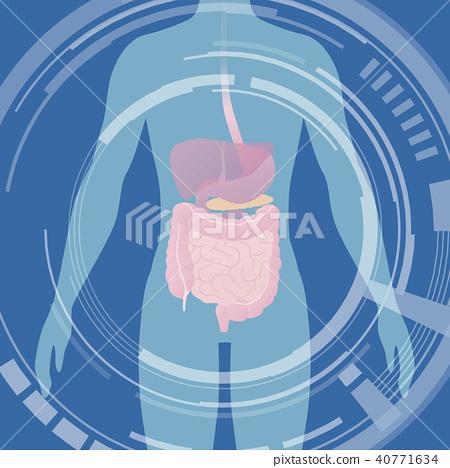 사람의 실루엣과 장기 의료 인터페이스 40771634