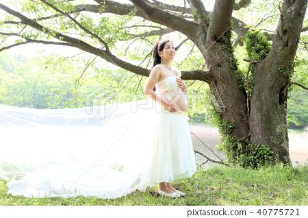 출산 사진 자연의 임산부 40775721