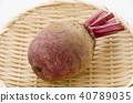 甜菜 打敗 糖蘿蔔 40789035