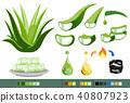 Properties of Aloe Vera concept. 40807923