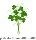 Shamrock or clover bouquet. Vector 40808409