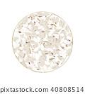Wholegrain crispbreads isolated on white. Vector 40808514