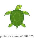 turtle sea vector 40809675