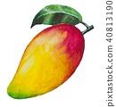 ผลไม้,มะม่วง,ลูกแพร์ 40813190