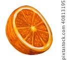 과일, 과실, 열매 40813195