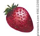 สตรอเบอร์รี่,ผลไม้,อาหาร 40813200