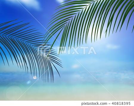 背景 - 热带 - 海 - 天空 40818395