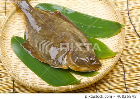 Ishigara food ingredients 40826845