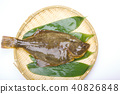 righteye flounder, fish, fishes 40826848