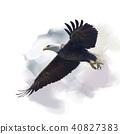 american bald eagle watercolor 40827383