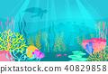 underwater background with sea flora 40829858