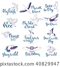 bird, vector, birdie 40829947