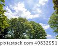 신록의 나무와 푸른 하늘과 구름 40832951