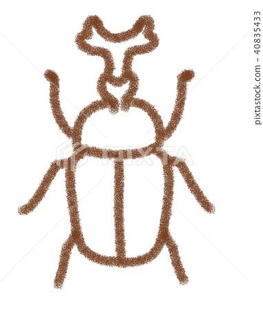 Beetle 40835433