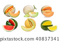 collection of melon isolated on white background 40837341