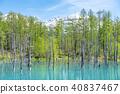 아오이이케, 청의 호수, 연못 40837467