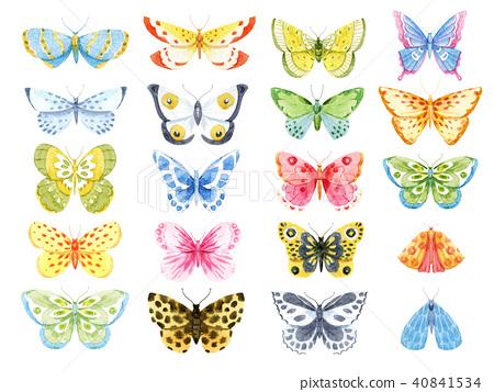 Watercolor butterfly set 40841534