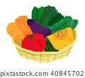 菜新鮮的例證紅蘿蔔蕃茄南瓜 40845702
