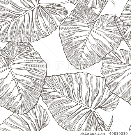 Jungle Leaves Seamless Vector Floral Pattern Stock Illustration 40850050 Pixta The most common tropical leaves background material is. https www pixtastock com illustration 40850050