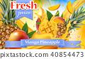 vector mango juice 40854473