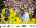 Japanese Dress Wedding Bride 40862040