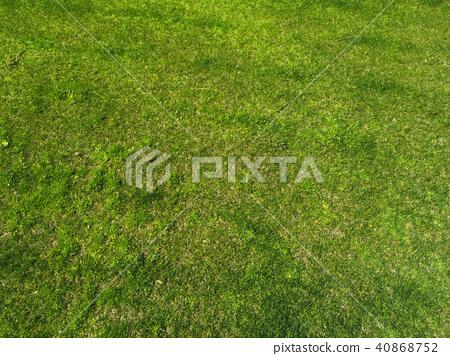 잔디 이미지 40868752