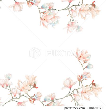 水彩玉蘭花花卉和樹枝 40870972